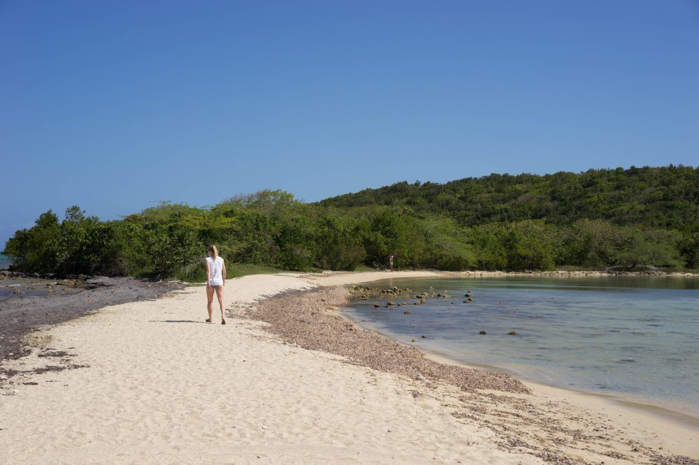 Vieques_54