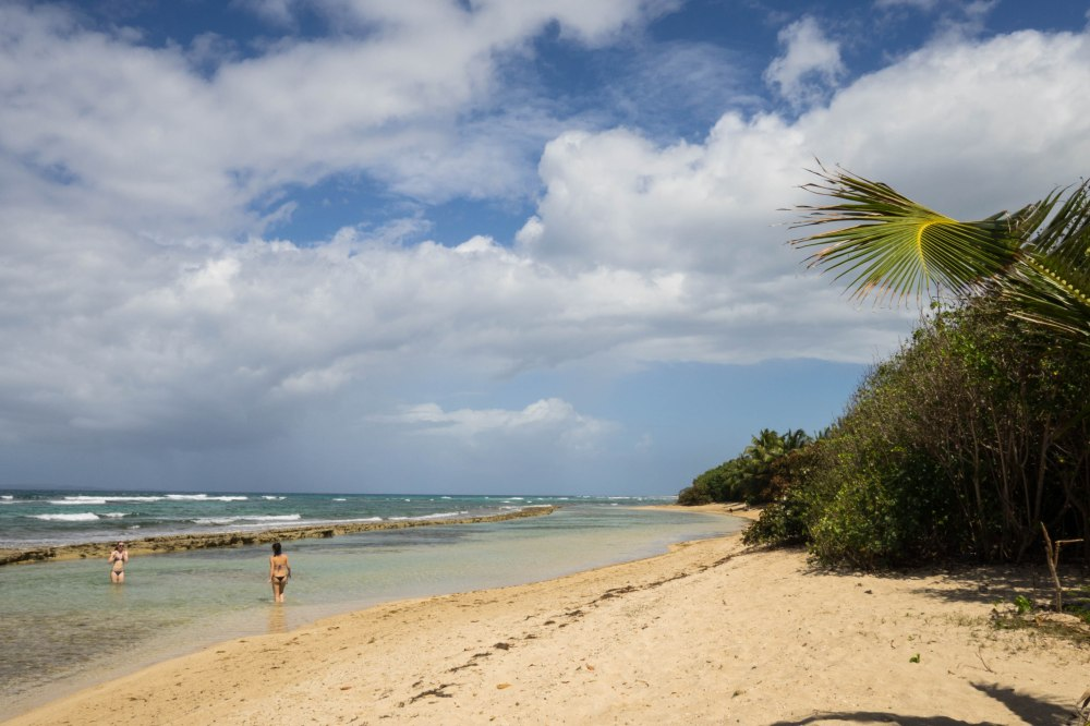 Vieques_6
