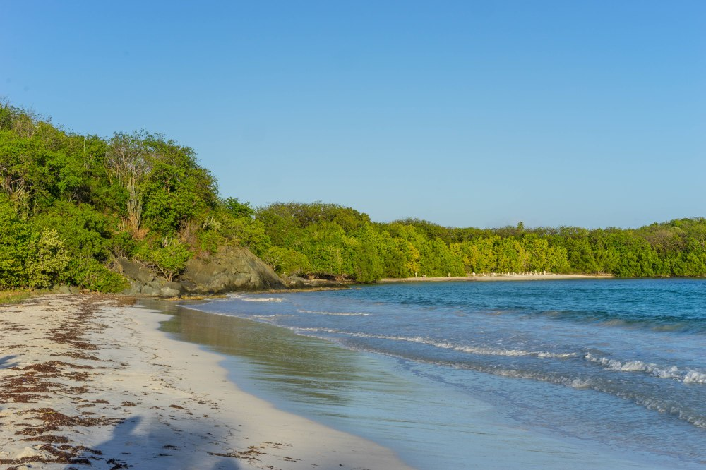 Vieques_72