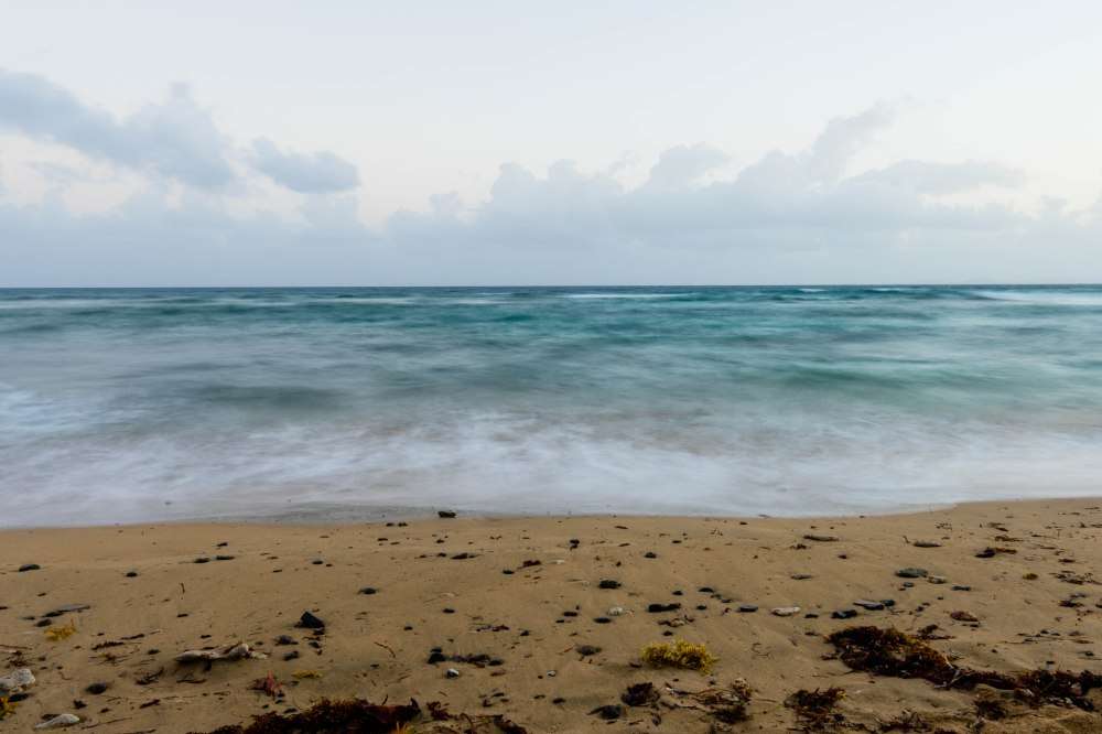 Vieques_8